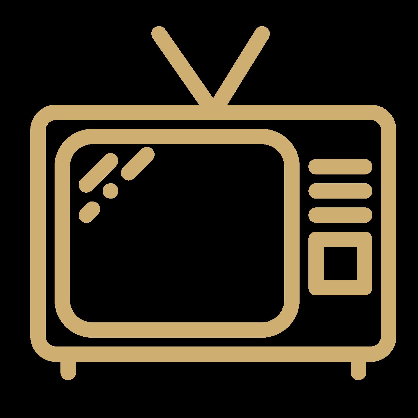 Televisión. Alojamientos turísticos Cardona